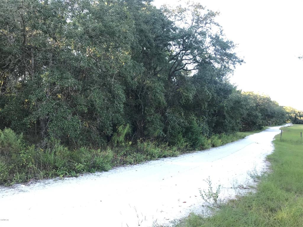 TBD SE 55th AVE Property Photo - TRENTON, FL real estate listing