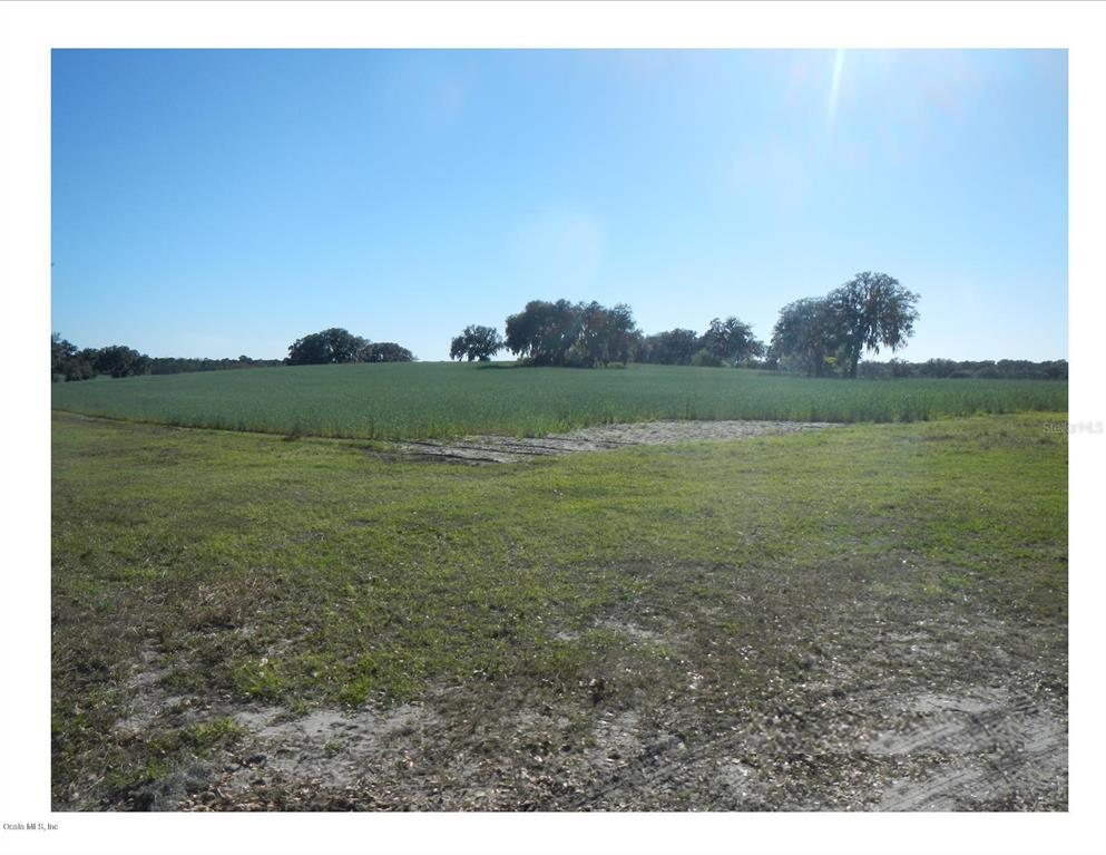 00 SW Shorewood DR Property Photo - DUNNELLON, FL real estate listing