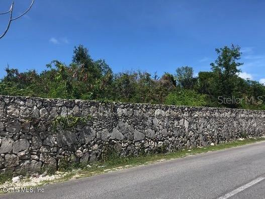 0 Leopoldina Vda Martinez Property Photo - PUNTA CANA, OC real estate listing