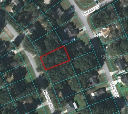 TBD Almond RD, OCALA, FL 34472 - OCALA, FL real estate listing