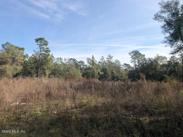 Property Photo - OCALA, FL real estate listing