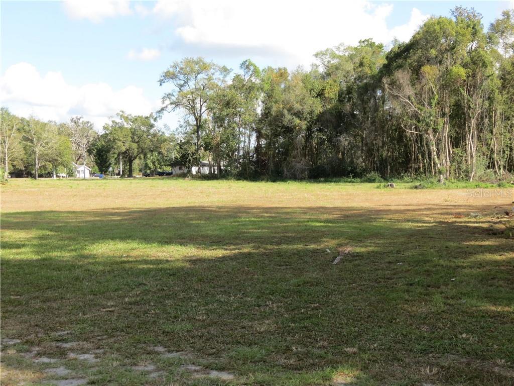 375 W THRASHER DR, BRONSON, FL 32621 - BRONSON, FL real estate listing