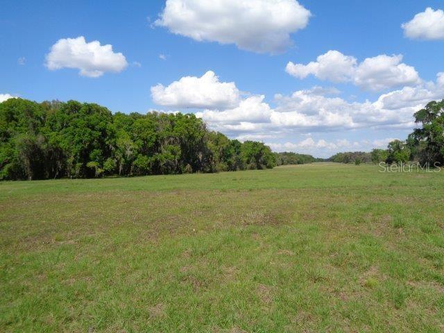 3795 W HWY 318 Property Photo - CITRA, FL real estate listing