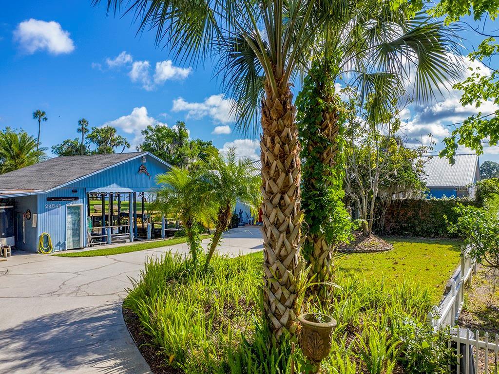 24545 SNAIL RD Property Photo - ASTOR, FL real estate listing