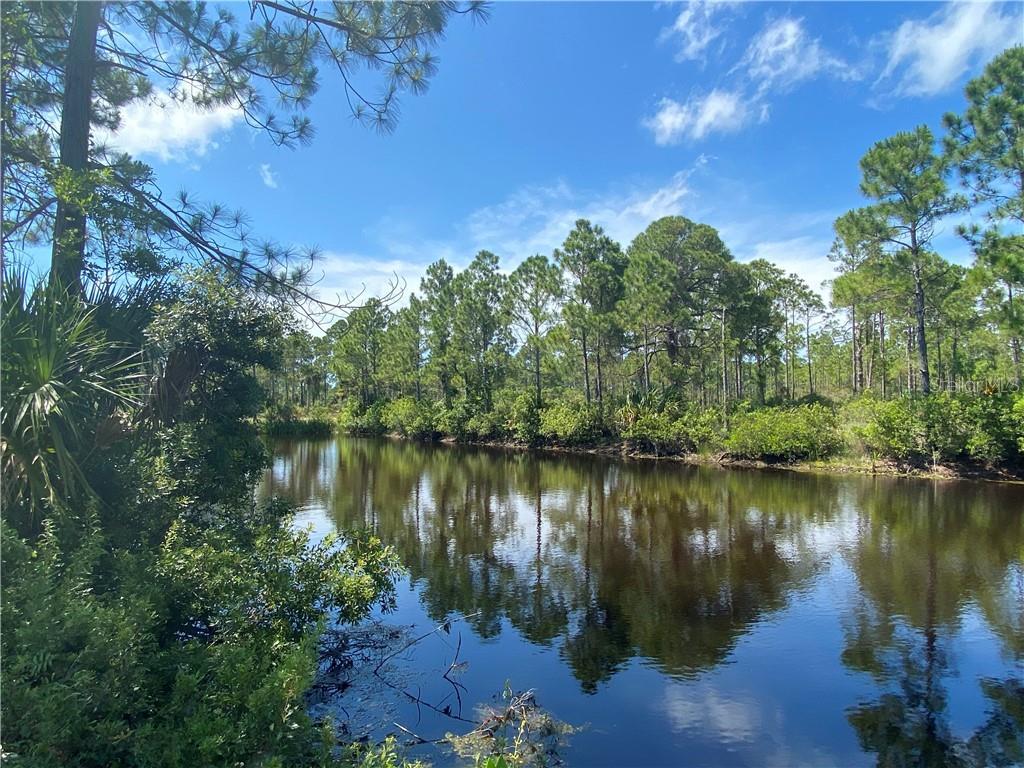 SW 100 PL Property Photo - CEDAR KEY, FL real estate listing