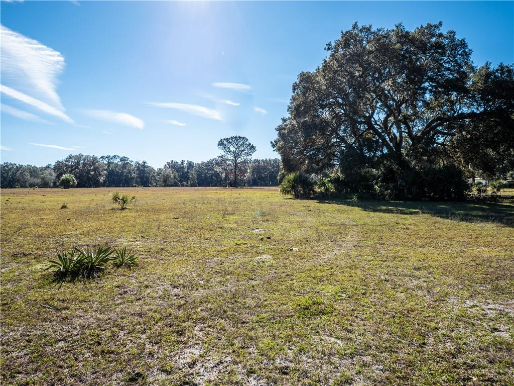 11851 NE 222ND ST Property Photo - FORT MC COY, FL real estate listing