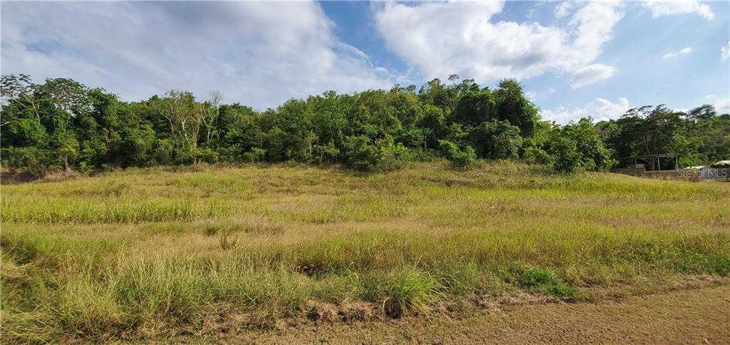 PR 482 KM. 0.5 INT. YEGUADA Property Photo - CAMUY, PR real estate listing