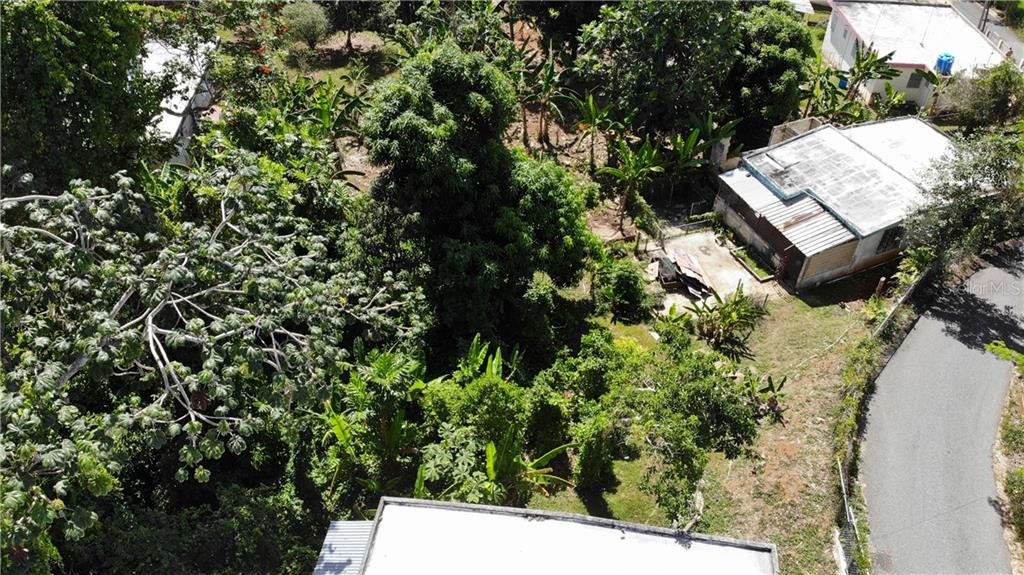 Carretera 119 BARRIO PIEDRA GORDA Property Photo - CAMUY, PR real estate listing