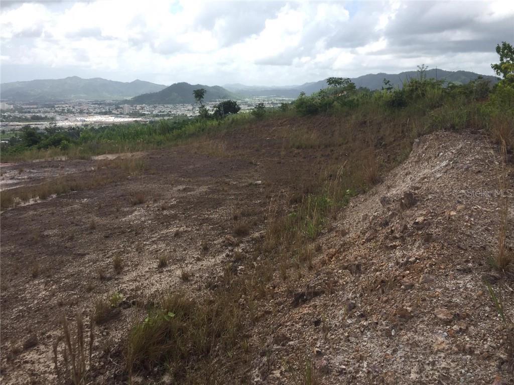 LOT 17, MONTES LANDS, SECTOR SANTA BARBARA #Rincon Ward Property Photo - GURABO, PR real estate listing