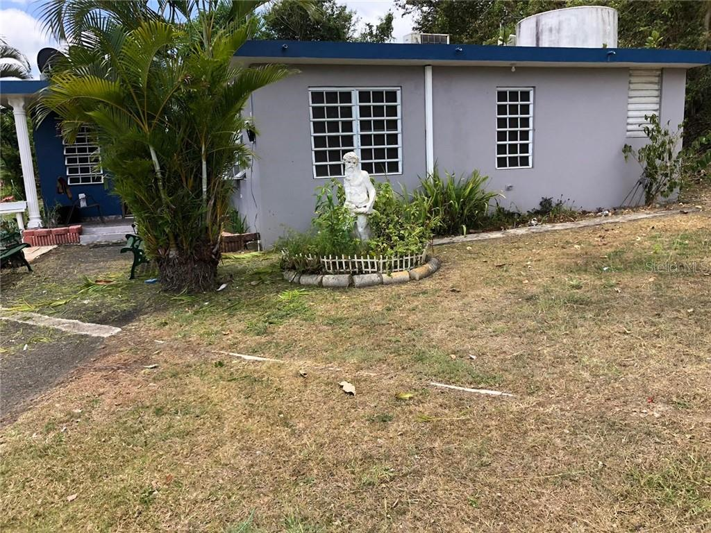 1 CUBUY Property Photo - CANOVANAS, PR real estate listing