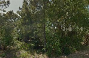 FIRETOWER RD, CHIPLEY, FL 32428 - CHIPLEY, FL real estate listing