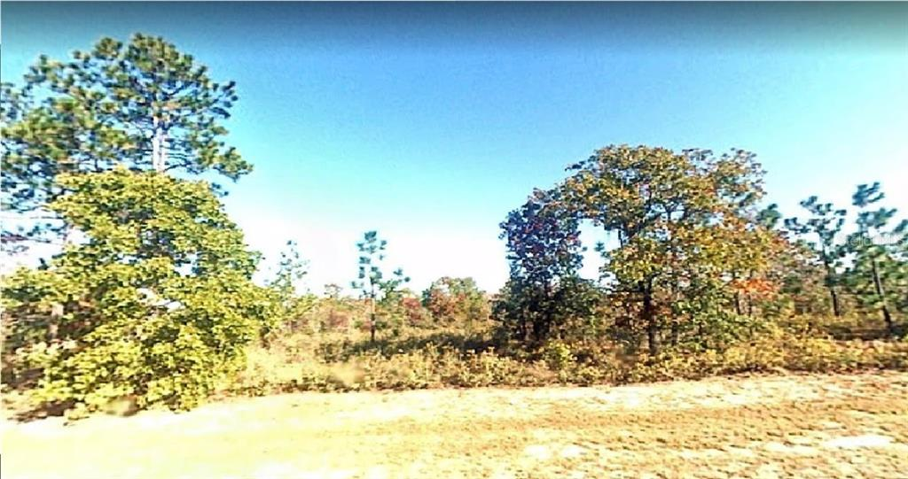 SHELBY CT Property Photo - CHIPLEY, FL real estate listing