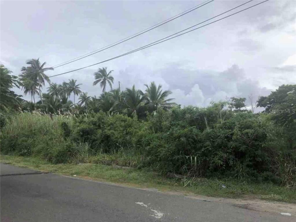 CALLE HOGAR EL PARAISO Property Photo - VEGA ALTA, PR real estate listing