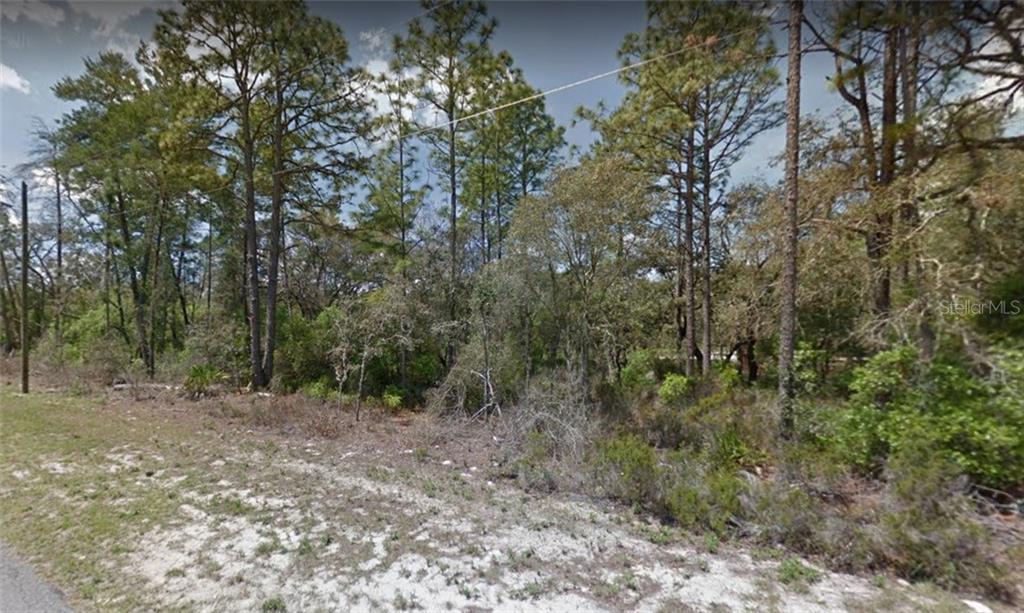 69TH CT Property Photo - OCALA, FL real estate listing