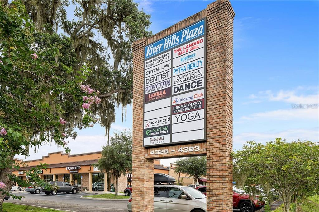 4325 LYNX PAW TRL Property Photo - VALRICO, FL real estate listing