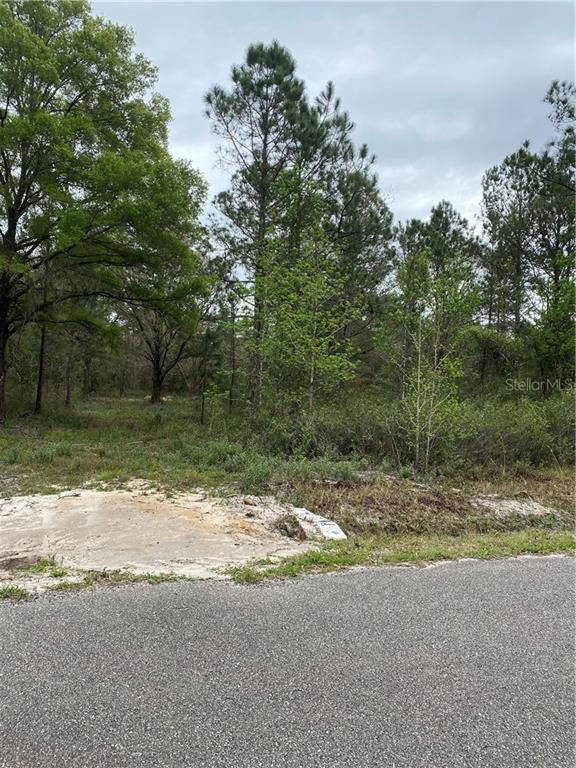 10040 TURPIN AVE Property Photo - HASTINGS, FL real estate listing