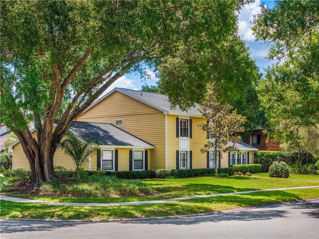 4115 Carrollwood Village Dr Property Photo