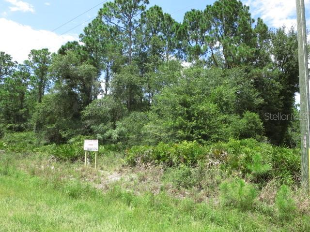 PARADISE BLVD, GEORGETOWN, FL 32139 - GEORGETOWN, FL real estate listing