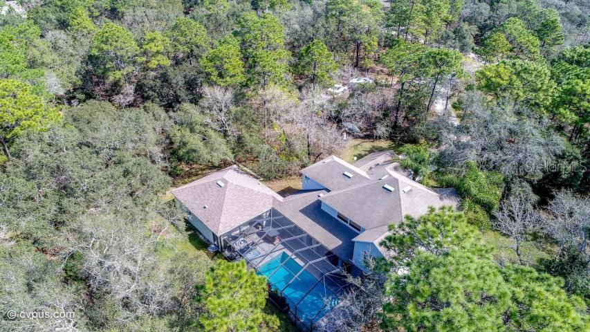 12147 MASKED DUCK RD, WEEKI WACHEE, FL 34614 - WEEKI WACHEE, FL real estate listing