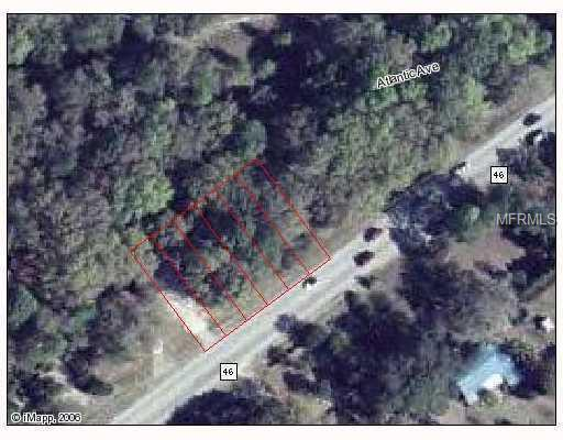 FL- SR 46 Property Photo - MT PLYMOUTH, FL real estate listing