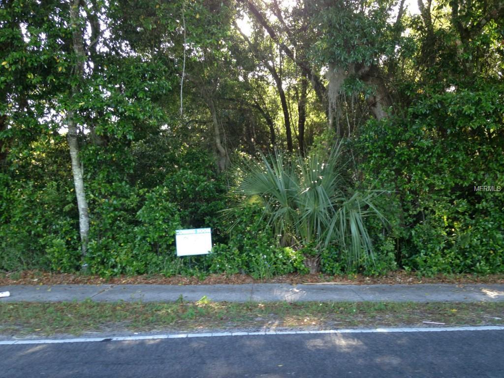 OLD GENEVA RD. Property Photo - GENEVA, FL real estate listing