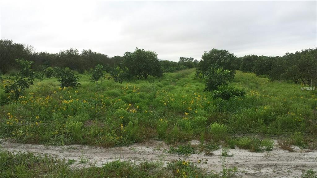 4910 WESLEY ROAD Property Photo - APOPKA, FL real estate listing