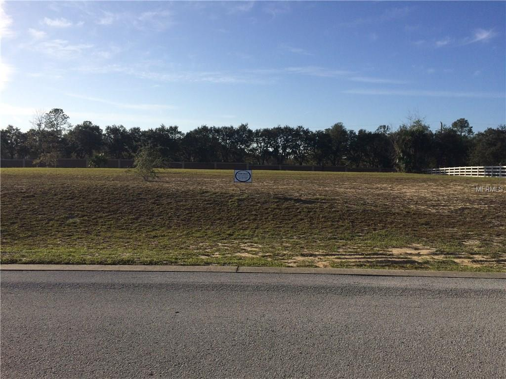 WELDON DR Property Photo - EUSTIS, FL real estate listing