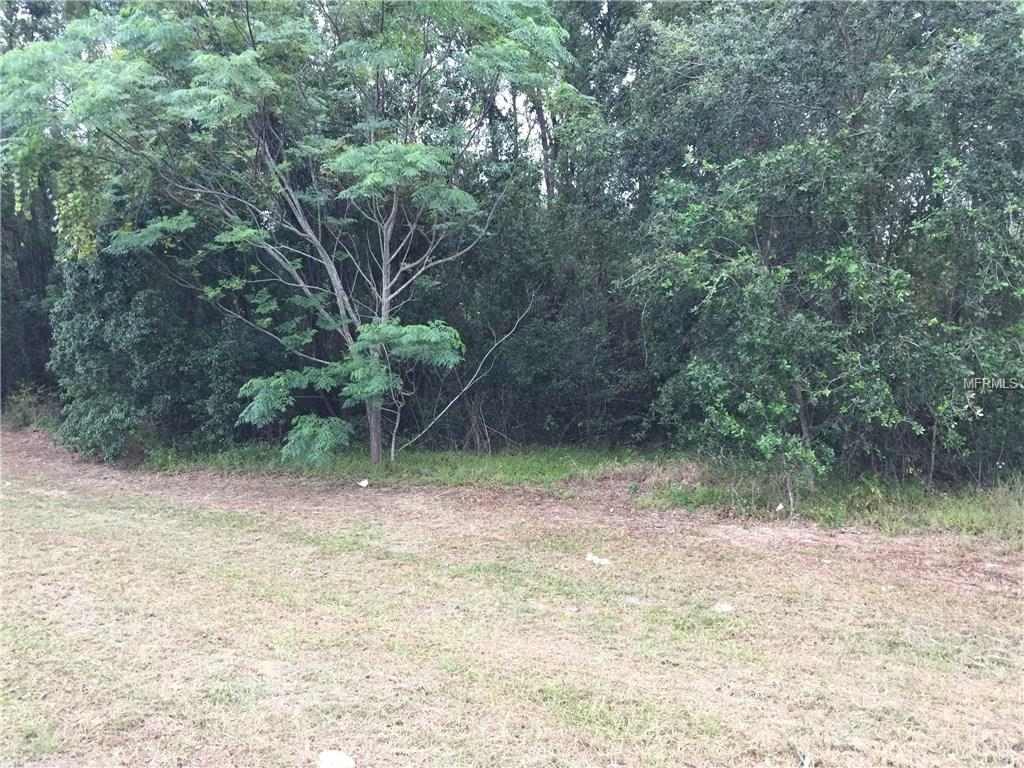 TBD US HWY 27 Property Photo - CLERMONT, FL real estate listing