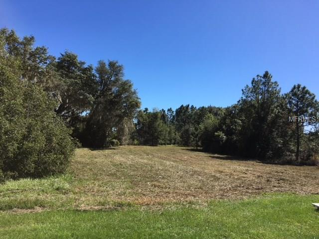 441 LONG AND WINDING ROAD Property Photo - GROVELAND, FL real estate listing