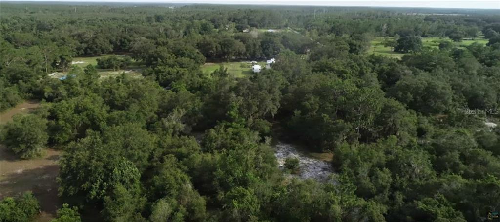 517 WETLANDS PL Property Photo - SAINT CLOUD, FL real estate listing