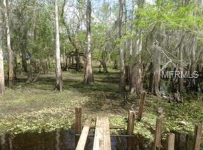 1289 TALL PINES DR Property Photo - OSTEEN, FL real estate listing