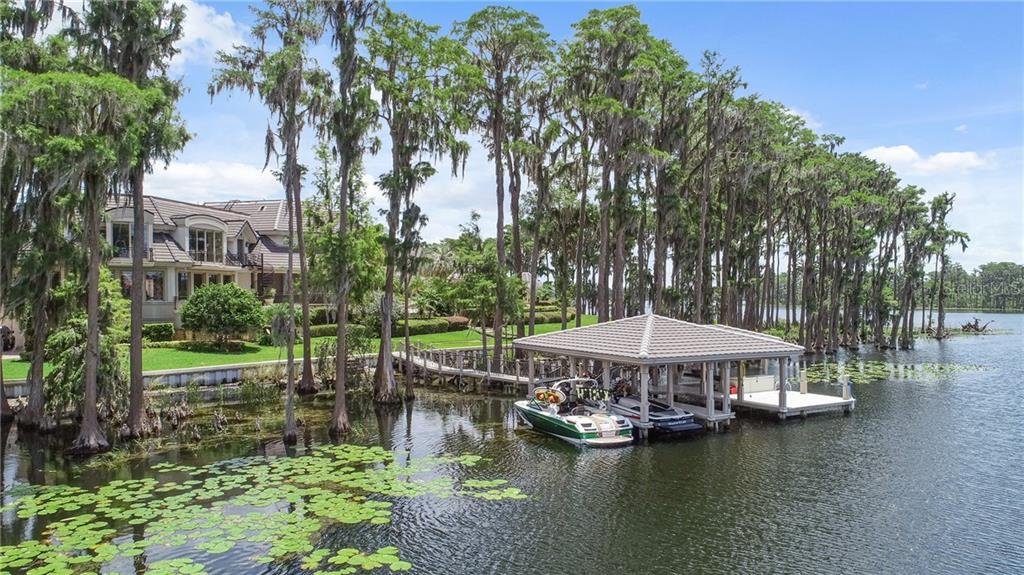 9912 LAKE LOUISE DRIVE Property Photo - WINDERMERE, FL real estate listing