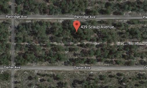 439 SCAUP AVE Property Photo - SEBRING, FL real estate listing