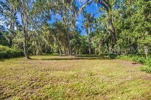 GREEN LAKE DR Property Photo - EUSTIS, FL real estate listing
