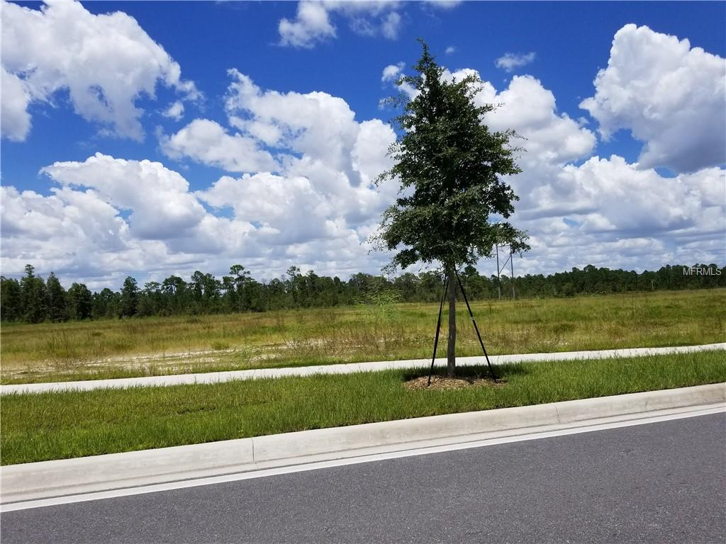 S Apopka Vineland Property Photo