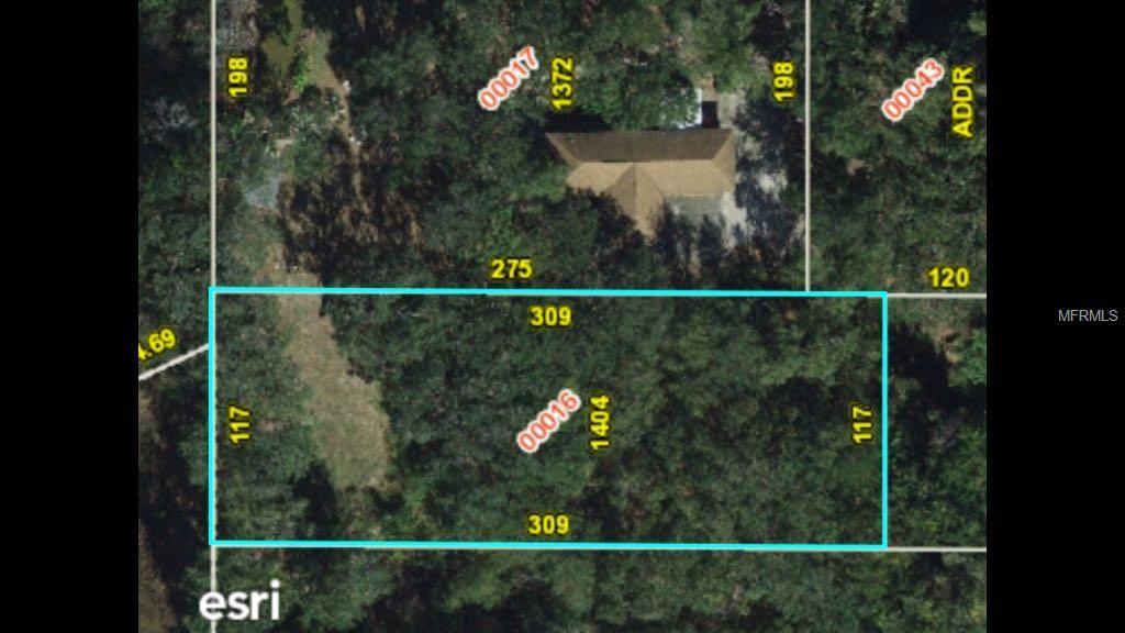 1404 AVALON RD Property Photo