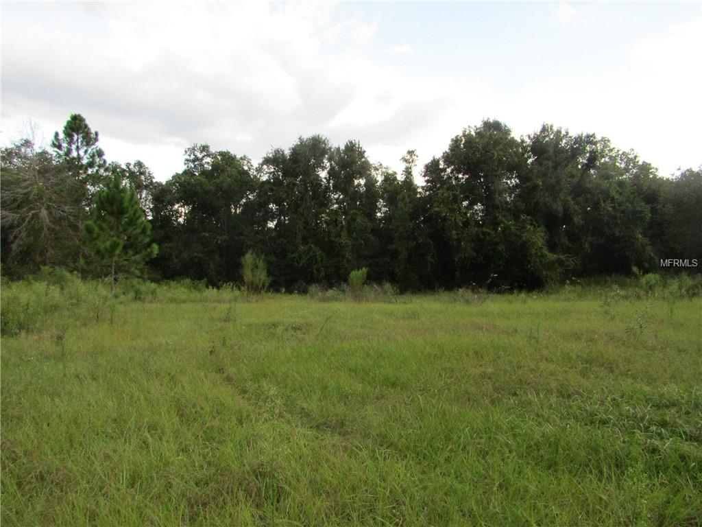WESTBROCK ROAD Property Photo - ASTATULA, FL real estate listing