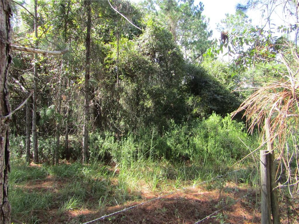 DR BAKER ROAD Property Photo - GROVELAND, FL real estate listing