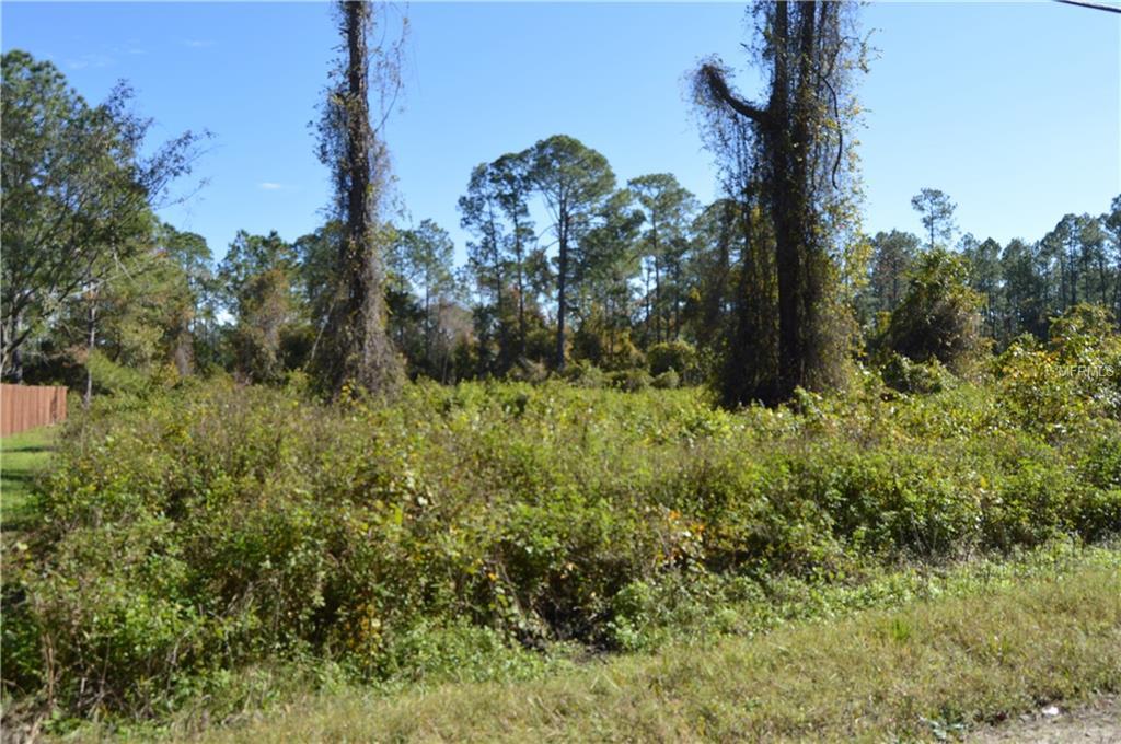 11TH AVENUE Property Photo - DELAND, FL real estate listing