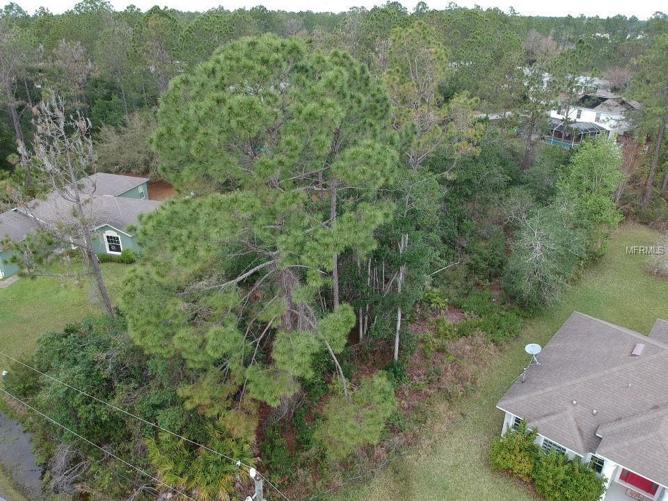 30 RENWORTH LN Property Photo - PALM COAST, FL real estate listing