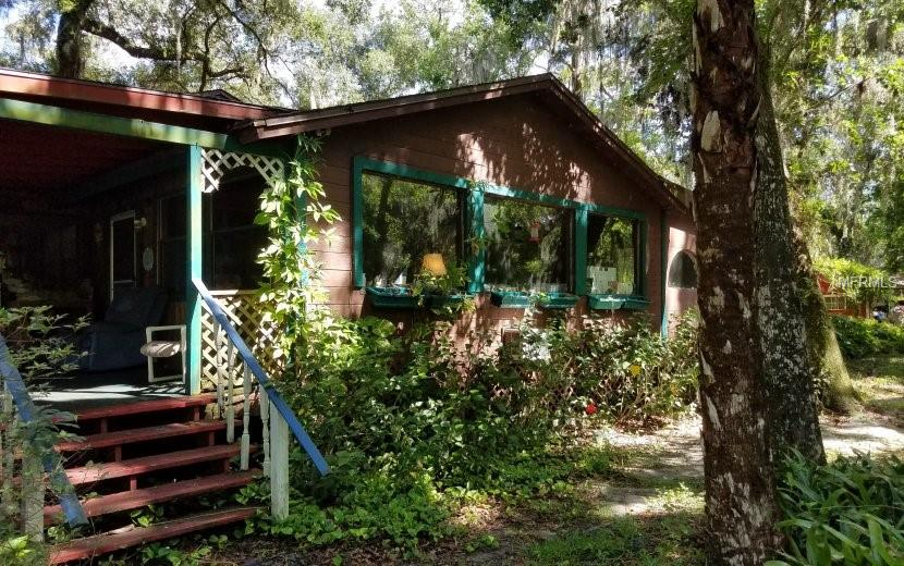 1185 PINEY WOODS TRL Property Photo - OSTEEN, FL real estate listing