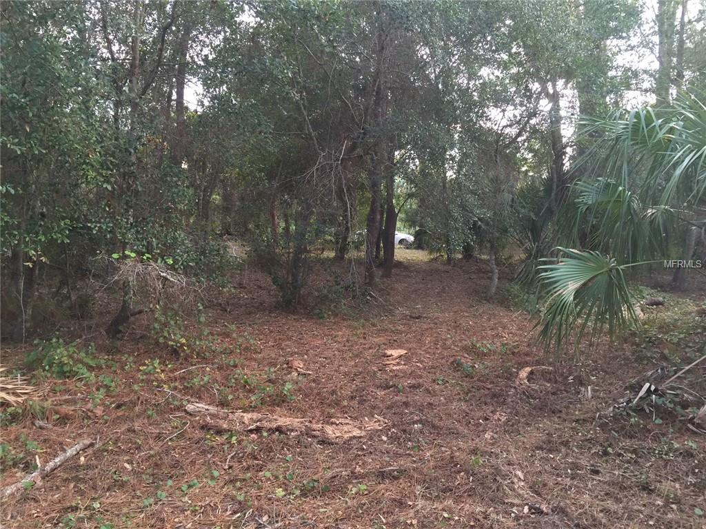 PERVIS LN Property Photo - OSTEEN, FL real estate listing