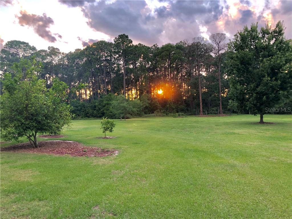 16601 INSPIRATION LANE, GROVELAND, FL 34736 - GROVELAND, FL real estate listing