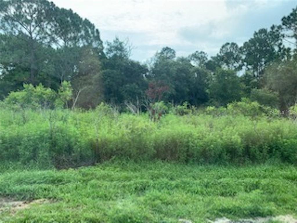 610 AMAZON PLACE Property Photo
