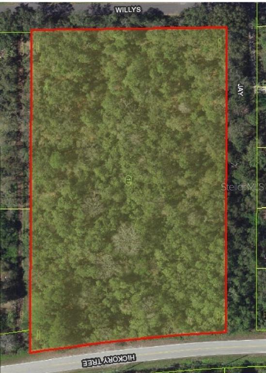Hickory Tree Road Property Photo