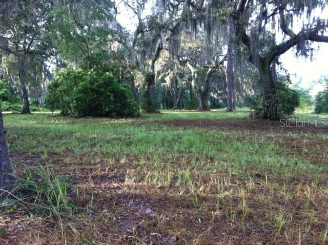 3689 E ROUND LAKE RD ROAD Property Photo - ZELLWOOD, FL real estate listing
