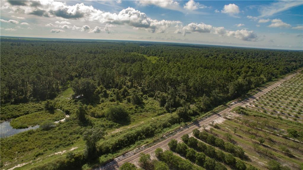 202 K W FARMS RD Property Photo - LAKE PLACID, FL real estate listing