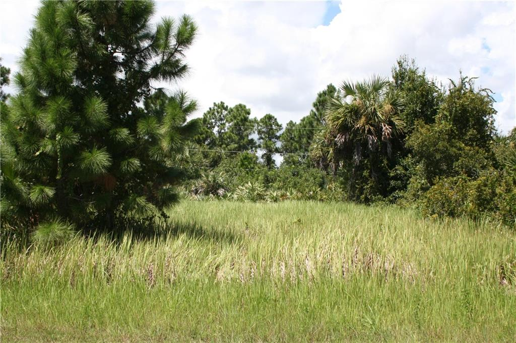 3042 FLAGSTAFF AVE SE Property Photo - PALM BAY, FL real estate listing