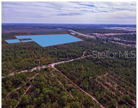 INTERNATIONAL DRIVE Property Photo - ORLANDO, FL real estate listing