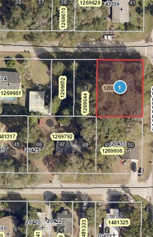 20433 GREENWING ROAD Property Photo - ALTOONA, FL real estate listing